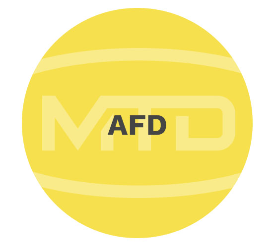 MTD Services afd