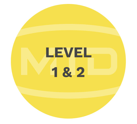 MTD Services level1 2
