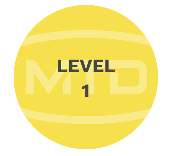 MTD Services level1